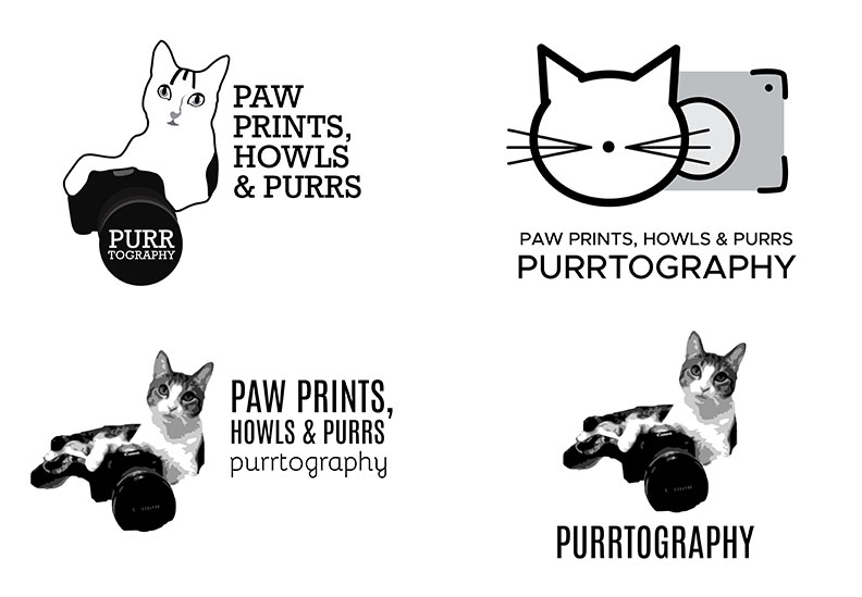 purrtography-concepts