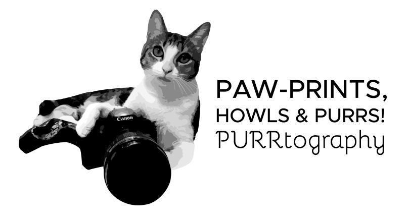purrtography-logo-f-01